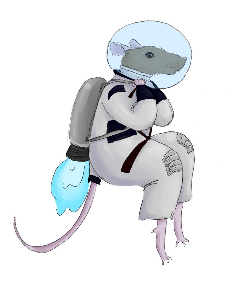 Rat%20maquette_pic1